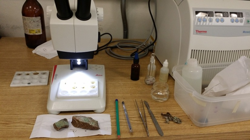 Hands on Science Labs for Online Students- We can dothat!